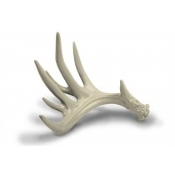 BROWNING® Antler Chew Toy